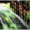 「ひっそりと・・。」小江戸川越散歩192