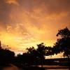 雨上がりの夕焼け