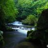 渓流歩き2