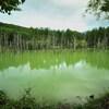 青い池の憂鬱