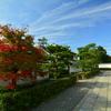 妙心寺養徳院前の紅葉