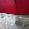 雨の日の車道