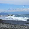 三保の松原から見た富士山