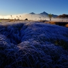 霜晨の湖畔