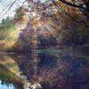 光芒reflection