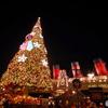 ディズニーシーのクリスマス クリスマスツリーとSSコロンビア号