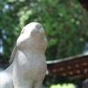 ウサギのいる神社