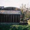 小屋と柿の木