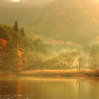 秋から冬へと