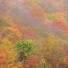 丹波山の秋Ⅲ