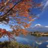 湖畔の秋 -232T