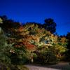 晩秋の夜 京都-5