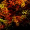 永観堂 宝篋印塔と紅葉