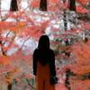 これが日本の秋
