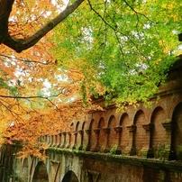 南禅寺の定番ですが「琵琶湖疏水分線」