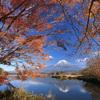田貫湖の湖畔風景