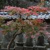 円覚寺・2
