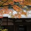 円覚寺・5