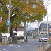 写真エッセイ:バス、浜街道をゆく:NTW152