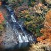 粟又の滝①