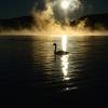 煌然の朝靄(再)