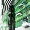 緑一色なビル