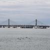 銚子漁港・1