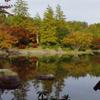 日本庭園 (2)