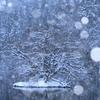 雪幻-winter dust-
