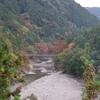 氷川小橋と紅葉