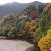 日原川の紅葉