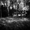 北越物語 悪魔の棲む家