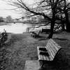 川辺のベンチ