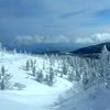 自然が織りなす雪の世界へ ♪