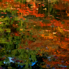 溶け合う紅葉