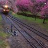 始発電車がやって来る。