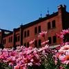 赤レンガ倉庫、春の休日