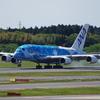 ANA[FLYING HONU](JA381A)A380-841@成田_01