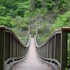 人気ない吊橋
