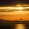 瀬戸の夕陽「金色の海原を飛ぶ」