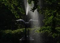 日比谷公園の朝