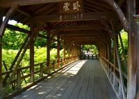東福寺・臥雲橋2