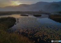 湿原の夜明け
