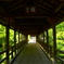 東福寺・偃月橋3