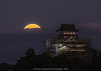 国宝犬山城と小望月