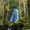 秋の宇津江四十八滝
