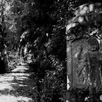 群馬赤城福増寺の秋