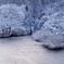 ヤマセミの棲む川