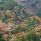 嵐山 大悲閣の山紅葉
