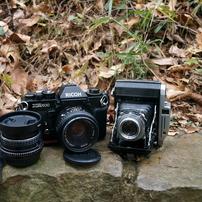 フィルムカメラの写真